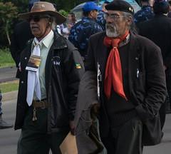 DSC_5209 (neyde zys) Tags: bandadabrigada brigadamilitar desfilefarroupilha gauchos indumentaria prendas tradicao