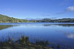 Loch Achray. (billmac_sco) Tags: scotland loch landscape water