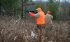 Private Alabama Quail Hunting - Davis Quail 36