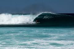 BW7A0296.jpg (zabomysicka) Tags: hawaii oahu surfing northshore pipeline ehukaibeachpark