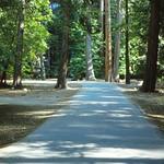 1983_JULY_Yosemite2-FujiRD100-RollB_0016 thumbnail