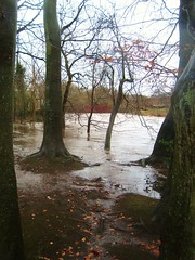 Flooding in Pollock Park (adm cro) Tags: whitecartwater spate highflow