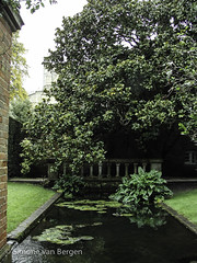 "Winchester: Lilly Pond • <a style=""font-size:0.8em;"" href=""http://www.flickr.com/photos/44019124@N04/8201107278/"" target=""_blank"">View on Flickr</a>"