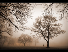 Closing in........ (Chrisconphoto) Tags: uk trees mist cold fog mood foreboding freezing walker sthelens closingin