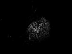20121206-IMG_0008-1-2 (Timo.W.) Tags: pictures great explore top10 darmstadt exciting rheinmain bestpictures grossumstadt saarbrcker bestcamera timowenzl