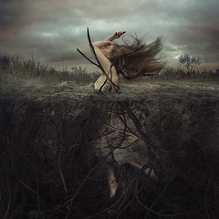 battle at cliffside hill (brookeshaden) Tags: cliff earth roots dirt growing sinking struggle crosssection fineartphotography conceptualphotography brookeshaden