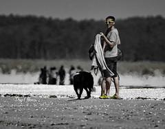 sur la plage - on the beach (png nexus) Tags: nb bw desaturation noir blanc black white
