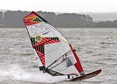 Aug20024a (Mike Millard) Tags: hamworthypark pooleharbour windsurfers