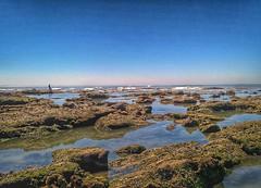 Fisherman (Dina Faveiro) Tags: instagramapp square squareformat iphoneography uploaded:by=instagram portugal figueiradafoz buarcos praia beach rocks rochas pescador fisherman