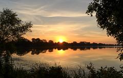 An August Sunrise (mahar15) Tags: sky morning clouds trees landscape minnesota sunrise nature water reflections outdoors dawn lake weather lakewinona winonaminnesota