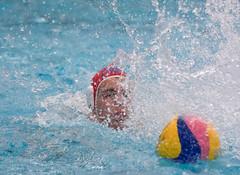 28190573 (roel.ubels) Tags: jong oranje nederland holland duitsland deutschland sport topsport waterpolo 2016 oefenwedstrijd alphen aan de rijn aquarijn
