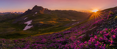 San Juan Summer Fuchsia Sunset (Steadfast Christian) Tags: sanjuanmountains sunflare sunset hiking patrickdillonphotocom colorado durango silverton grenadiers wildflowers alpine peaks mountains snow summer nature god creation tundra explore landscapephotography