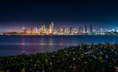 San Diego Night Skyline (davidboyett285) Tags: sandiego sandiegoskyline skyline coast coronado sandiegoca cityscape cityatnight