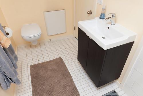NE Clackamas Bath & Basement 015