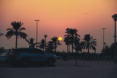 Mamzar Beach Sharjah, U.A.E (Aaftab Aafu) Tags: landscape almamzar sharjah uae unitedarabemirates nature dubai