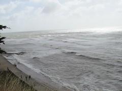 IMG_2302 (2) (fyfester) Tags: shanklin isleofwight august 2016 england bonchurch sea seaside waves