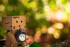 My Neighbor Totoro  Danboard / Canon EOS60D:Canon EF-S60mm F2.8 Macro USM (telenity) Tags: totoro tateyama japan landscape danboard akarenga       ghibli
