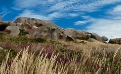 Armonia/Harmony (gcostagli) Tags: ploumanach sentier douaniers perrosguirec francia france canon color sea roccia rock mare costa coast bretagna britain rosa pink granito granite