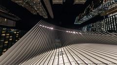 Calatrava Transportation Hub (DSC08639) (Michael.Lee.Pics.NYC) Tags: newyork wtc worldtradecenter transportationhub oculus calatrava architecture night fisheye sony a7rm2 rokinon12mmf28