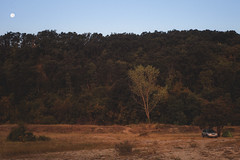 BS_CT-7314 (herbari) Tags: subaru subie forester woods forest sand dunes bulgaria