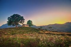 Ride the wind to the sun..::HDR::.. (S'uhas [ BAT out of HELL ]) Tags: arifgraphy bangladesh rangamati raikhongchori nature landscape hdr highdynamicrange nikond300 tokina1116mm