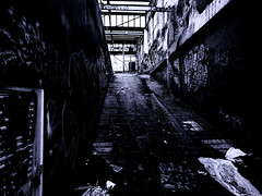 UP RAMP - CLIFTON HILL_2016_ID HEARN MACKINNON (ID Hearn Mackinnon) Tags: melbourne melbourneaustralia melbournevictoria collingwood collingwoodmelbourne urban urbandecayaustralia graffitti idhearnmackinnon innersuburbs
