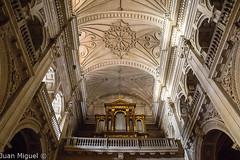 Iglesia del Perpetuo Socorro (Juan Miguel) Tags: architecture espaa spain europa europe andaluca granada sonyalpha65 tamron1750 iglesia church rgano