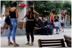 Thessaloniki (Kevrekidis) Tags: greece thessaloniki streetphotography    griechenland grecia grce grcia greqia greekorthodox greekorthodoxpriest greekpriest smartphone strasenfotografie fotografacallejera photographiederue canonixus160 macedonia