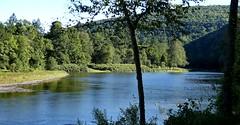 SL_092516i (Eric C. Reuter) Tags: ny catskills nature scenery peaseddyroad september 2016 092516 river