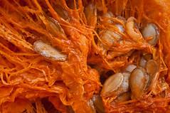 Pumpkin (JOAO DE BARROS) Tags: barros joo pumpkin botany macro