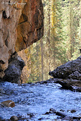 DSC_2796_Rs(C) (moufid.jarjour) Tags: canada green nationalpark alberta banff lakelouise lakemoraine