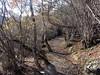 Valle del río Escrita Espot (teonewman) Tags: de valle vall daneu aneu