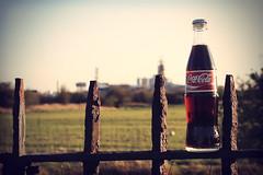 Vintage. (_rosscooke_) Tags: red vintage fence bottle cola top rusty coke setting coca vignette trtees