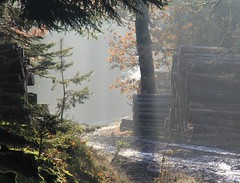 On a muddy path through the woods (:Linda:) Tags: mist germany village hoarfrost thuringia sunbeam woodpile conifer nadelbaum gossmannsrod rauhreif lumberpile