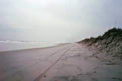Poles (Nicholas_Luvaul) Tags: morning cold film beach fog analog 35mm surf fuji florida superia surfer olympus surfing xa2 iso 400 surfboard jacksonville gloom fl poles mayport