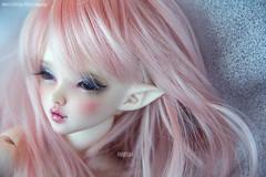 Serenity. (Dancing*Butterfly) Tags: doll vampire chloe elf bjd fairyland mnf minifee viridianhouse