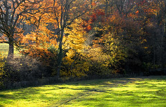 weekday silent wandering (robwiddowson) Tags: uk autumn alone no secret derbyshire awesome tourists hidden fields areas sunlit linacre homeofthevoles