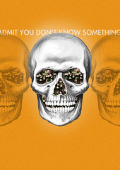 Admit you don't know something. (No_Veo) Tags: flowers orange flores color skull nice colombia something naranja calavera vanish