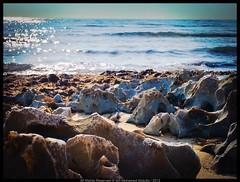 2012/11/24 ( MA Mohamed Abdullah) Tags: sea beach bahrain model dubai photographer designer uae kuwait abu dhabi  doha qatar               qatari               mohamed1ma 20121124 mamohamedabdulh