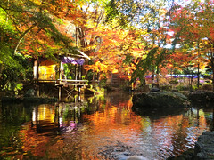 Reflections on the Pond (japanders) Tags: autumn trees reflection castle water colors leaves japan pond   gifu