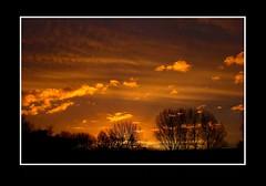 Landschap (Theo Kelderman) Tags: holland haarlem canon bomen nederland 2012 landschap schalkwijk wolkenlucht vanmorgen theokeldermanphotography 815uur