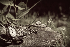 They're wating for you, Alice (Thelin Photography) Tags: clock alice watch wonderland