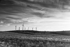 Capital Wind Farm in the evening (sachman75) Tags: sunset blackandwhite bw clouds landscape evening wind windmills alternativeenergy windturbines greenenergy sigma50mmf14 canon5dmarkii capitalwindfarm leefiltersndgrad4stops
