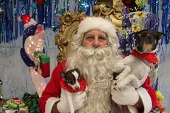IMG_0177 (PMC Fresno) Tags: santa pet photos center medical spa pmc