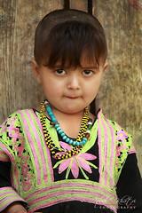 The Look (Iqbal Khatri) Tags: pakistan portrait baby girl look childhood dress north innocent valley tradition tribe khyber kalash kafir iqbal kalasha chitral khatri kafiristan kalashvalley pakhtoon bamborat bamboret kalashavalley bamburat bamburet khuwan