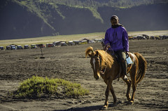 Man ride a horse (narenrit) Tags: bromo mountain mist light sun sunrise cloud sky morning valcano tree view beauty hill top scenic indonesia tropical asia asian east cliff travel trip mount sapatate different village country