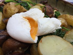 Sauteed New Potatoes, Mushroom, Spinach and Poached Egg Breakfast at The Senate, Cambridge (John D McDonald) Tags: sauteednewpotatoes senate anglia cambridge cambridgeshire eastanglia sautepotatoes mushroom spinach egg poachedegg breakfast thesenate senatecambridge thesenatecambridge stmaryspassage cambs geotagged iphone iphone6