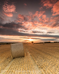 Harvest (Steven Peachey) Tags: landscape canon field farmland sunset sky clouds light golden bales harvest canon6d countydurham leefilters lightroom5 stevenpeachey lee09gnd lee06gnd goldenhour lowlight exposure fullframe ef1740mmf4l