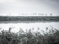 Across the Yare (fulham phil) Tags: longexposure sugarbeetfactory boats cantleyriver yaresunrise mist norfolk reflections trees windmill olympusomdem1 olympus1240
