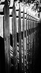 ...don't take o fence, think of it as a gate:)... (dawn.tranter) Tags: bw dof closeup texture gate monochrome fence blackwhite dawntranter fencedfriday